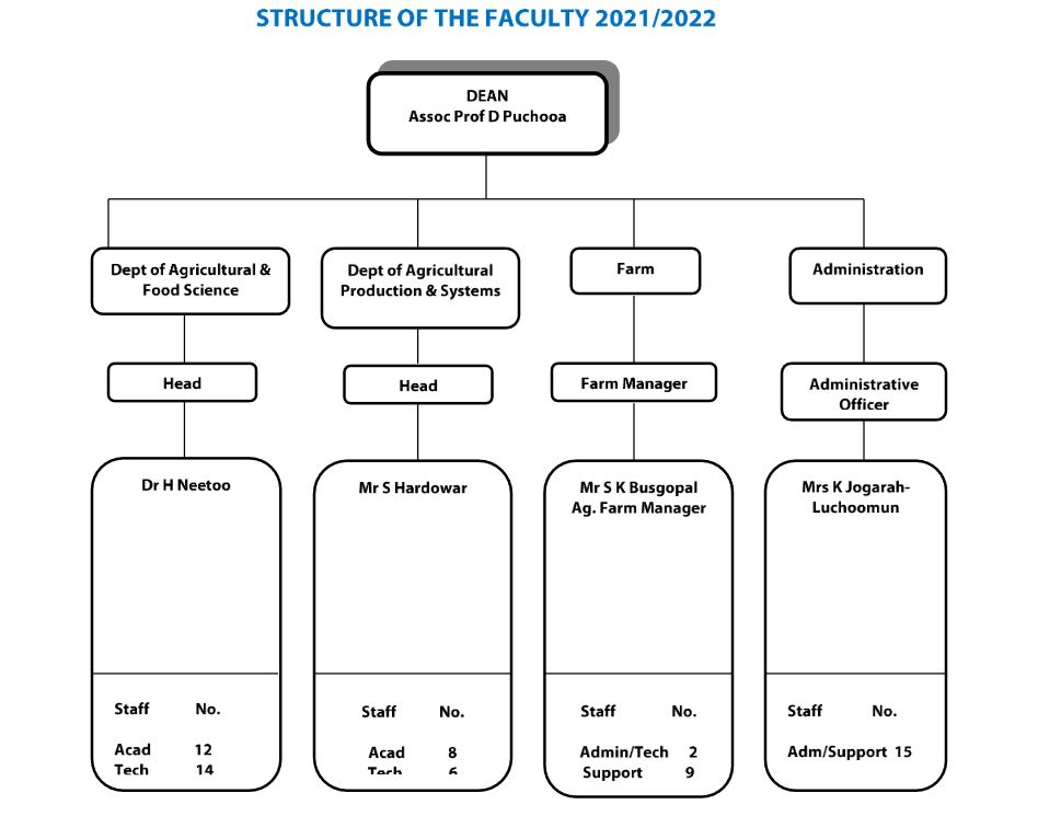 FacultyStructure
